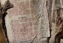 bible-survived-9-11-attack