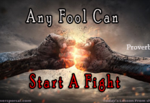Any Fool Can Start a fight