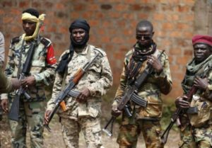 Muslim Rebels-Seleka